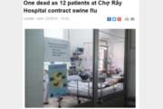 베트남서 '돼지독감'으로 2명 사망, 2009년 공포 또다시…