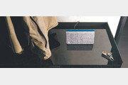 [DBR]사람 목소리 내고 그림자까지 만들어… 빈집털이 막는 AI스피커