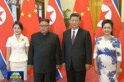 中내부, 시진핑 '北감싸기' 비판