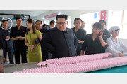 """""""北, 최근 수개월간 비밀장소 여러곳서 농축 우라늄 생산 늘려"""""""