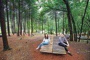 손미나와 스페인 청년 장민의 생태숲 걷기 여행