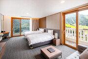 홍천 비발디파크, 더 파크 호텔 오픈