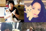 임순례·구하라·윤도현…순천만동물영화제로 향한다