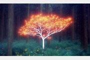 '순간 光' 중첩시켜 2∼6주 공들여 키운 '생명의 나무'