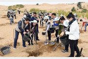 [청계천 옆 사진관]中 쿠부치 사막서 12년째 이어온 '희망의 나무심기'