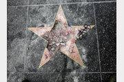 할리우드 '트럼프 별' 또 수난…별 위에 철창 설치돼