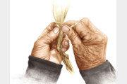 [그림책 한조각]손이 들려준 이야기들