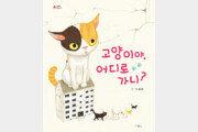 [어린이 책]재개발구역 고양이들… 쫓겨나 어디로 갈까요