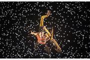 서울의 가을, 연극-춤으로 물든다