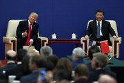 """WSJ """"백악관, 11월 G20서 트럼프·시진핑 회담 추진"""""""