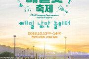 서울시, 가을 맞이 한강 서래섬 메밀꽃 축제 개최