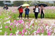 [날씨] 18일 전국 산발적 비…강원 산지는 '첫 눈' 가능성도