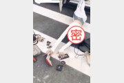 중국서 '폴링스타 챌린지' 대유행, 그게 뭔가요?