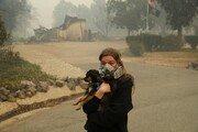 """""""사라진 파라다이스""""…美 캘리포니아 산불로 25명 사망, 건물 6700여 채 소실"""