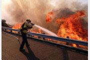 美 캘리포니아 최악 산불… 44명 사망 228명 실종