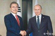 문재인 대통령-푸틴, 대북 제재완화 조건 논의