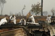 캘리포니아 산불 사망 58명…실종자 130여명 수색 '박차'