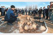 '조선의 최종병기' 비격진천뢰, 땅구덩이서 우르르