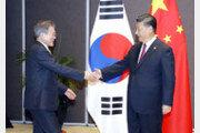 """文대통령 """"평화프로세스 공동협력 희망""""…시진핑 """"한중 입장 비슷"""""""