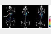 몸 속 미세먼지 한 톨까지 잡아내는 분자영상 기술 개발