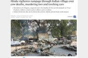 인도 힌두교도들, 소 사체에 격분…차량 불태우고 2명 살해