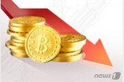 비트코인 가격 3500달러 깨졌다…하루 사이에 9% 폭락