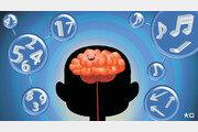 [김재호의 과학 에세이]덩어리로 뇌에 먹이 주기, 수학·과학 공부
