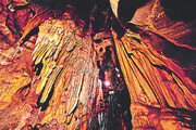 평균기온 15도… 아늑한 동굴에서 하는 자연공부