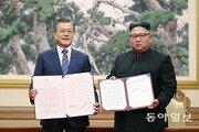 CNN '2018 좋은 뉴스'에 남북 종전선언 추진-한국 개 도살장 폐쇄 선정