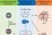 국내 연구진, 난치성 면역질환 '루푸스' 발병 원인 찾았다