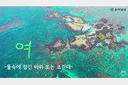 [드론으로 본 제주 비경] 해녀들의 보물창고 '여'…소유권 다툼도 치열