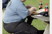 """서유럽서 가장 뚱뚱한 영국…""""비만은 질병"""" 논쟁"""