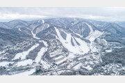 [레저] 용평리조트, 평창 발왕산 겨울사진 공모전