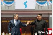 """靑 """"북미정상회담 이후에야 서울 답방 논의될 것"""""""