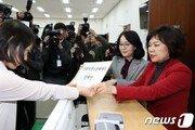 """靑 """"손혜원 의혹 건, 당에서 판단할 문제"""""""