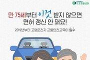 [카드뉴스] 올해부터 고령운전자 안전교육 '필수'…면허갱신 주기 단축
