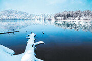순백의 겨울동화 속으로… 日홋카이도 '雪國여행'