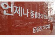 '안락사 논란' 케어에 노조 생긴다…박소연 해임 추진