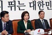 """나경원 """"정부, 北 비핵화 깜깜이 전략…큰 그림 내놔야"""""""