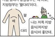 [만화 그리는 의사들]〈86〉지방분권이 이겨라!