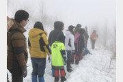 겨울 눈꽃길 걷자, 하이원리조트 '스노우 트레킹' 패키지