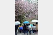 [날씨] 봄비 북상 실패…서울 등 안올듯