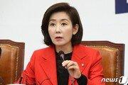 """나경원 """"반민특위 아닌 2019년 반문특위 비판한것"""" 해명"""