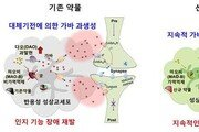 """""""장기간 인지장애 개선""""…'치매치료' 신약 후보 찾았다"""