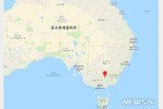 호주서 기르던 사슴에 받혀 남편 사망·부인 중상