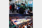 흥행행진, '농구축제'로 자리 잡은 챔피언결정전