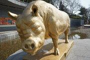 [바람개비]돝섬의 돼지 기운