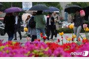 [날씨] 1일 낮 20도 넘고 일부 비…충청·호남 미세먼지 나쁨