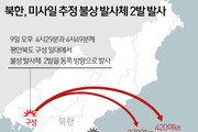美·日, 北 발사체는 '탄도미사일'…제재는?