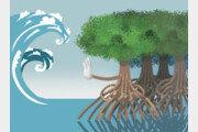 [날씨 이야기]자연재난은 자연이 막도록 하자